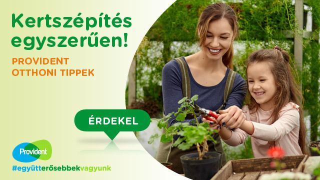 Provident kertszépítési tippek